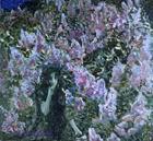 Врубель М.А. Сирень. 1900. Холст, масло. 160х177. ГТГ